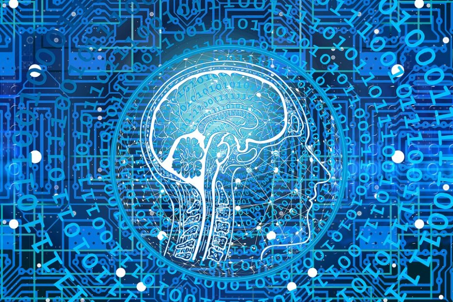 Hjernenettverk.