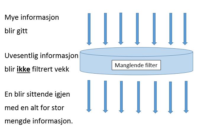 Bilder viser informasjon som går igjennom et filter som ikke filterer ut informasjon, men sender alt videre.